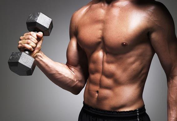 Hipertrofia Muscular: Treino para  aumentar sua musculatura