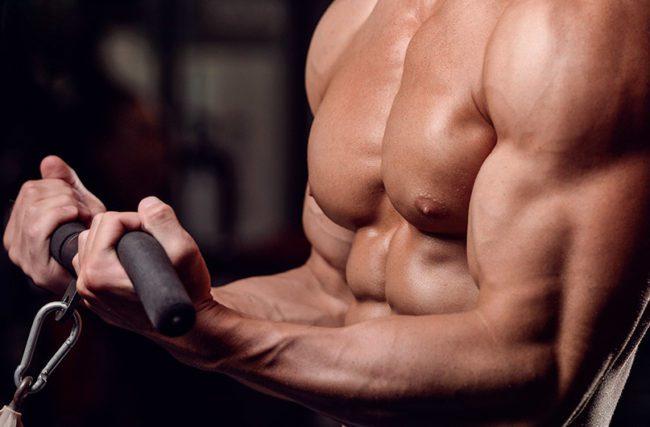Hipertrofia Muscular: Treino, dieta e alimentação ideais