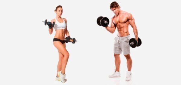 Hipertrofia Muscular: Treino