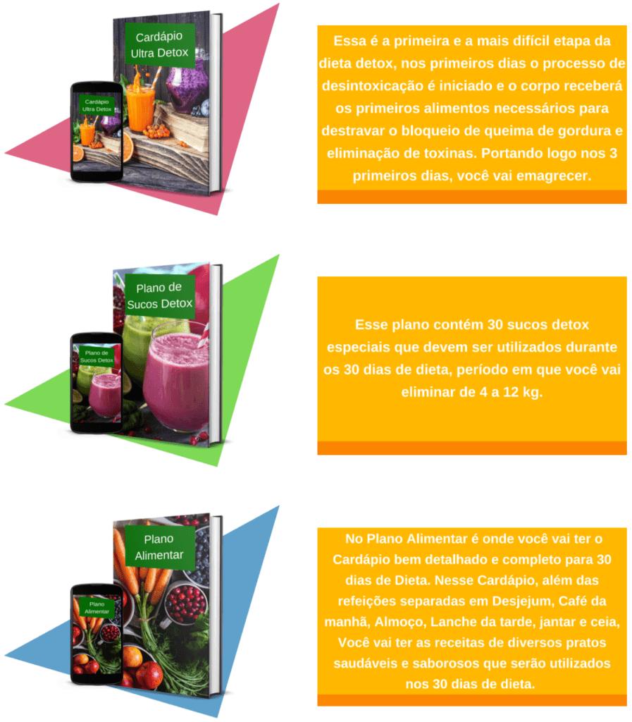 Conteúdo Dieta Detox 2.0 Funciona Mesmo