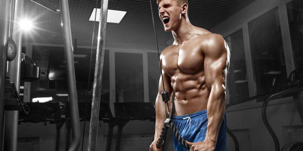 100 Dicas para Academia  - dicas de musculação iniciante