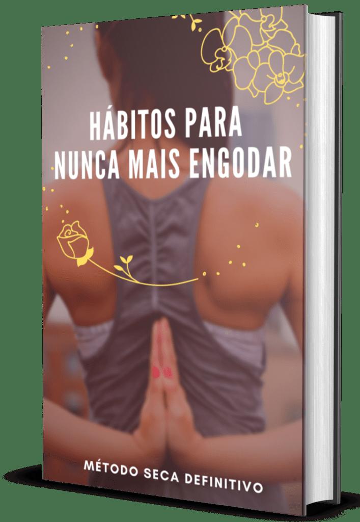 BÔNUS 4: E-book Hábitos para Nunca Mais Engordar