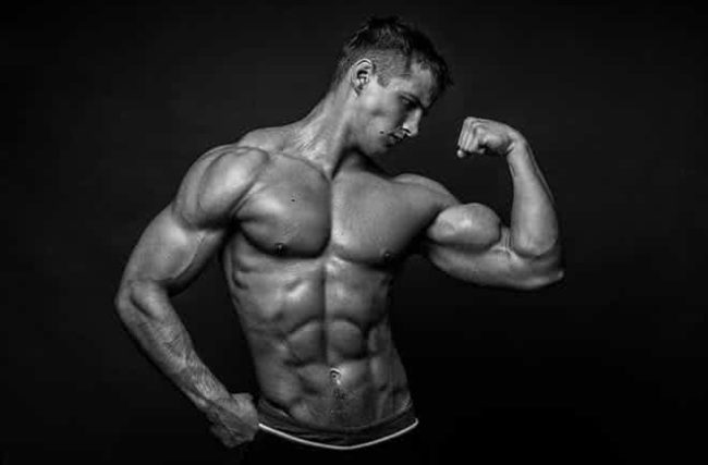 Manual do Ectomorfo: Ganhe Peso e Massa Magra de Forma Eficaz