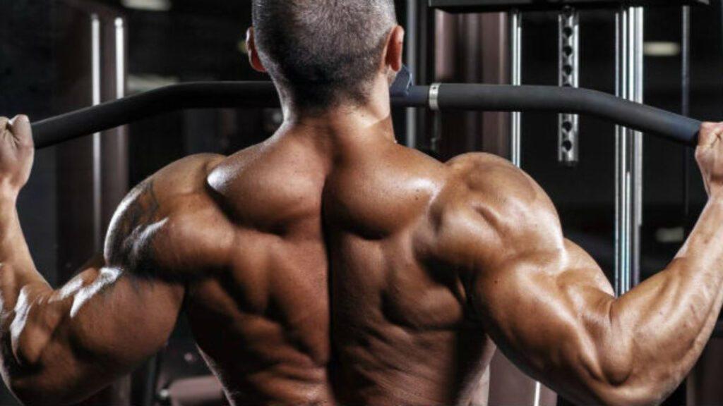 Segredos da Hipertrofia Muscular